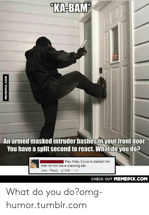 wrecking ball: KA-BAM  An armed masked intruder bashesinyour front door.  You have a split second to react. What do you do?  Play Miley Cyrus to distract him  then hit him like a wrecking ball  Like Reply 0538 · 1 hr  CHECK OUT MEMEPIX.COM  MEMEPIX.COM What do you do?omg-humor.tumblr.com
