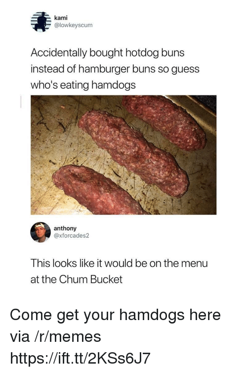 Memes, Guess, and Hamburger: kami  @lowkeyscum  Accidentally bought hotdog buns  instead of hamburger buns so guess  who's eating hamdogs  anthony  @xforcades2  This looks like it would be on the menu  at the Chum Bucket Come get your hamdogs here via /r/memes https://ift.tt/2KSs6J7