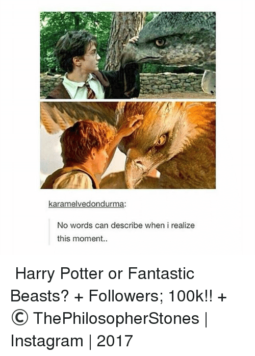 fantastic beasts: karamelvedondurma:  No words can describe when i realize  this moment ⠀⠀⠀⠀↡ Harry Potter or Fantastic Beasts? + Followers; 100k!! + © ThePhilosopherStones | Instagram | 2017