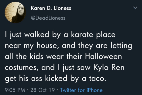 Ass, Halloween, and Iphone: Karen D. Lioness  @DeadLioness  I just walked by a karate place  near my house, and they are letting  all the kids wear their Halloween  costumes, and I just saw Kylo Ren  get his ass kicked by a ta co.  9:05 PM 28 Oct 19 Twitter for iPhone
