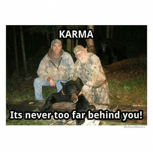 Memes, Karma, and Never: KARMA  Its never too far behind you!  WeKnowMemes