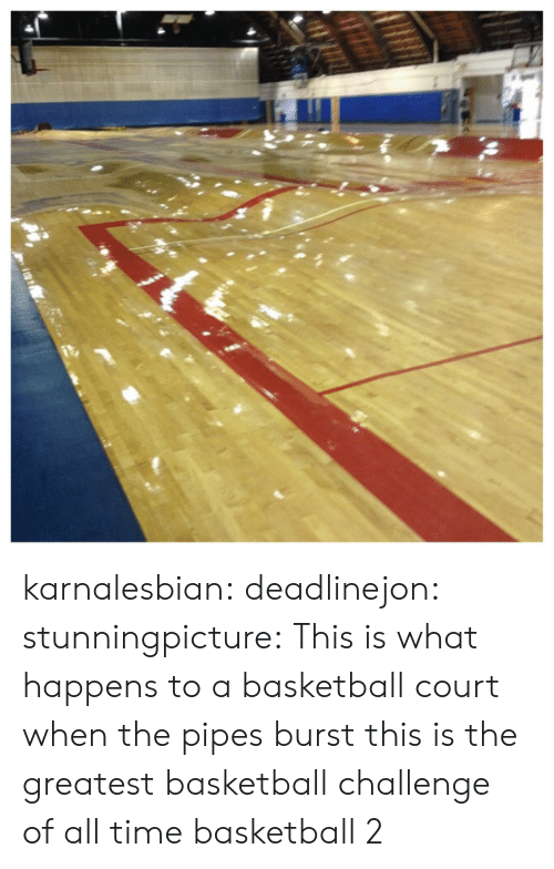 Basketball, Target, and Tumblr: karnalesbian:  deadlinejon:  stunningpicture:  This is what happens to a basketball court when the pipes burst  this is the greatest basketball challenge of all time  basketball 2