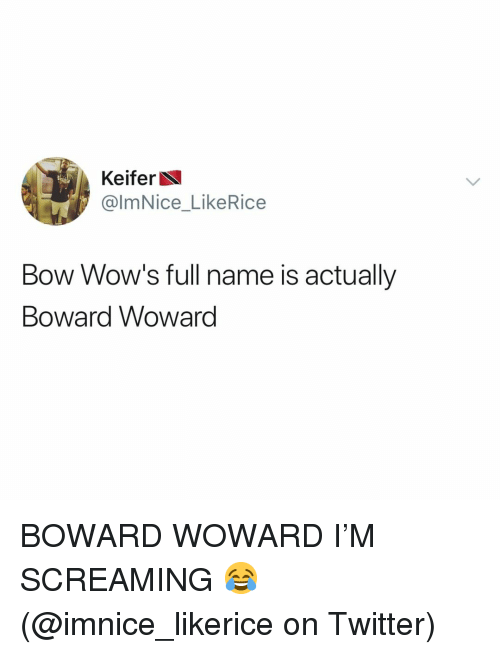Memes, Twitter, and 🤖: Keifer  @lmNice_LikeRice  Bow Wow's full name is actually  Boward Woward BOWARD WOWARD I'M SCREAMING 😂 (@imnice_likerice on Twitter)