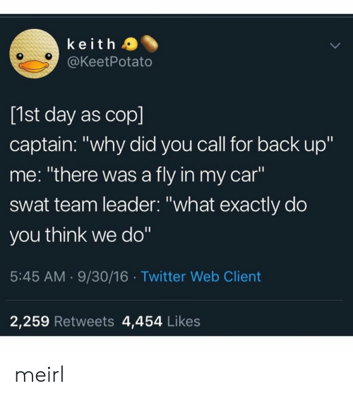 "Twitter, MeIRL, and Back: keith a  @KeetPotato  [1st day as cop]  captain: ""why did you call for back up""  me: ""there was a fly in my car""  swat team leader: ""what exactly do  you think we do""  5:45 AM.9/30/16 Twitter Web Client  2,259 Retweets 4,454 Likes meirl"