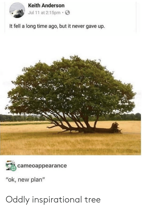 """Time, Tree, and Never: Keith Anderson  Jul 11 at 2:15pm  It fell a long time ago, but it never gave up.  cameoappearance  """"ok, new plan"""" Oddly inspirational tree"""