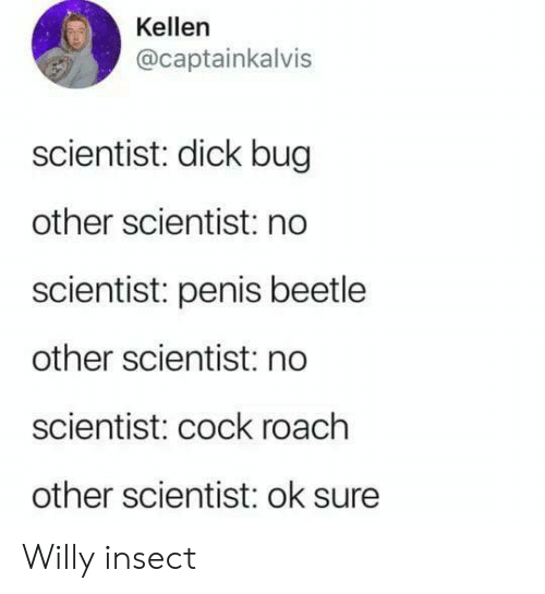 willy: Kellen  @captainkalvis  scientist: dick bug  other scientist: no  scientist: penis beetle  other scientist: no  scientist: cock roach  other scientist: ok sure Willy insect