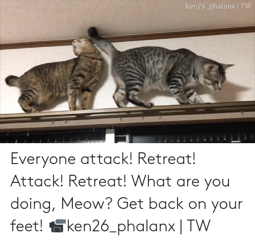 Dank, Back, and 🤖: ken26_phalanx   TW Everyone attack! Retreat! Attack! Retreat! What are you doing, Meow? Get back on your feet!  📹ken26_phalanx   TW