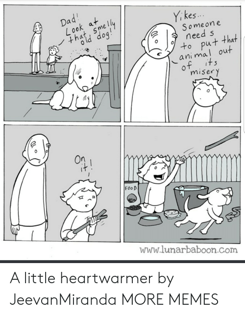 Dank, Food, and Memes: kes  Someon e  need s  ok mel  u+ that  ani maI out  miser y  On  FooD  www.lunarbaboon.Com A little heartwarmer by JeevanMiranda MORE MEMES