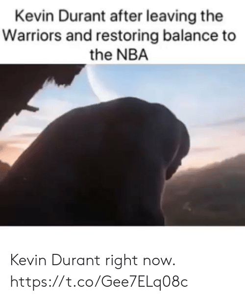 Kevin Durant: Kevin Durant after leaving the  Warriors and restoring balance to  the NBA Kevin Durant right now. https://t.co/Gee7ELq08c