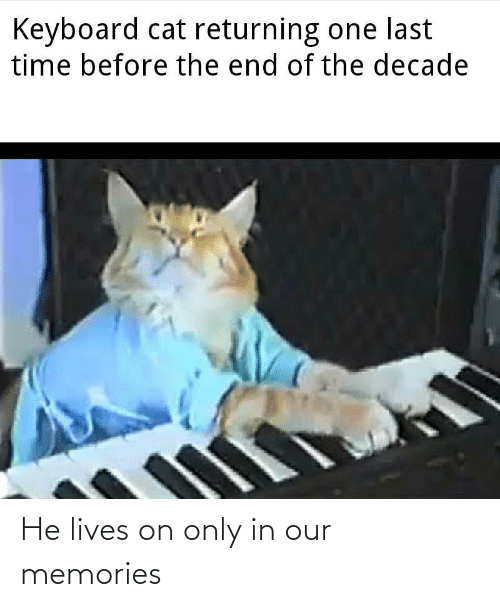 memories: Keyboard cat returning one last  time before the end of the decade He lives on only in our memories
