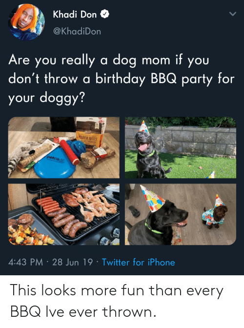 Birthday, Iphone, and Party: Khadi Don  @KhadiDon  Are you really a dog  don't throw a birthday BBQ party for  your doggy?  mom it you  EY  OWER BITES  petco  4:43 PM 28 Jun 19 Twitter for iPhone This looks more fun than every BBQ Ive ever thrown.