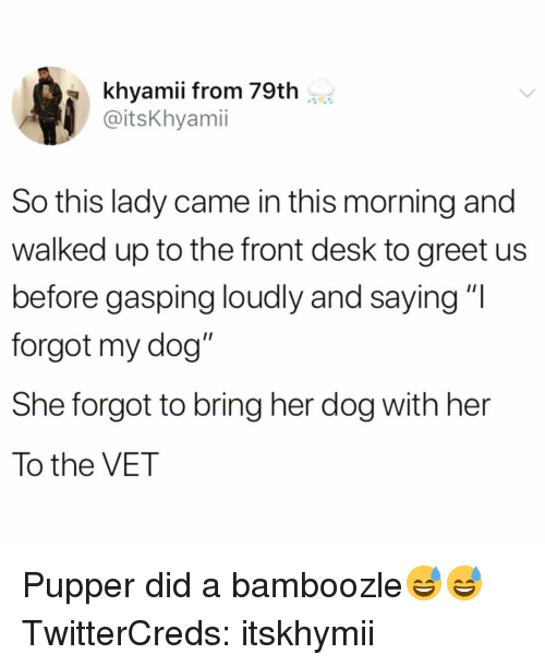 """Gasping: khyamii from 79th  @itsKhyami  So this lady came in this morning and  walked up to the front desk to greet us  before gasping loudly and saying""""I  forgot my dog""""  She forgot to bring her dog with her  To the VET Pupper did a bamboozle😅😅 TwitterCreds: itskhymii"""