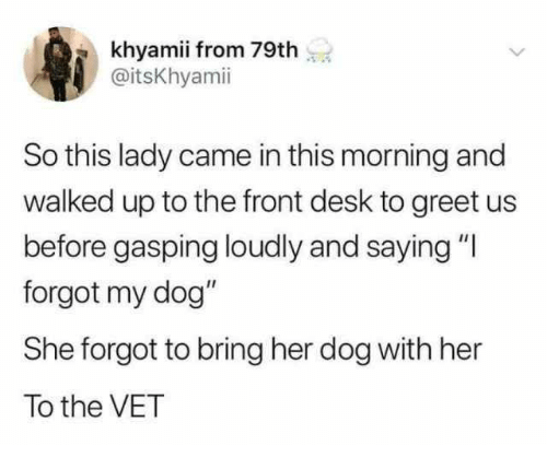 """Gasping: khyamii from 79th  @itsKhyamii  So this lady came in this morning and  walked up to the front desk to greet us  before gasping loudly and saying """"l  forgot my dog""""  She forgot to bring her dog with her  To the VET"""