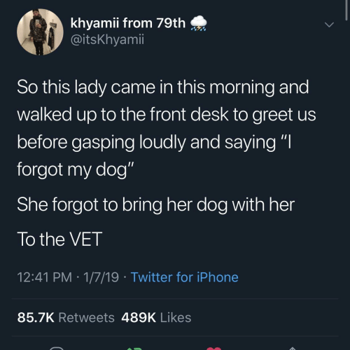 """Gasping: khyamii from 79th  @itsKhyamii  So this lady came in this morning and  walked up to the front desk to greet us  before gasping loudly and saying """"I  forgot my dog""""  She forgot to bring her dog with her  To the VET  12:41 PM 1/7/19 Twitter for iPhone  85.7K Retweets 489K Likes"""