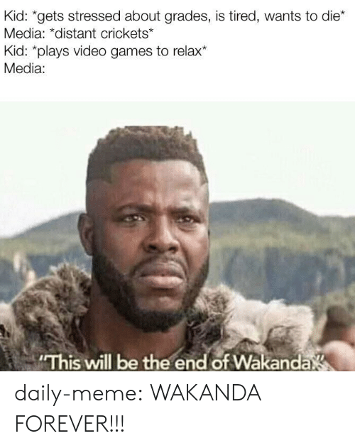 Wakanda: Kid: *gets stressed about grades, is tired, wants to die*  Media: *distant crickets*  Kid: *plays video games to relax*  Media:  This will be the end of Wakanda daily-meme:  WAKANDA FOREVER!!!