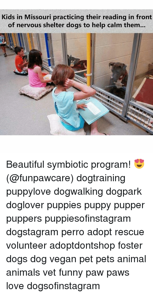 pawe: Kids in Missouri practicing their reading in front  of nervous shelter dogs to help calm them... Beautiful symbiotic program! 😍 (@funpawcare) dogtraining puppylove dogwalking dogpark doglover puppies puppy pupper puppers puppiesofinstagram dogstagram perro adopt rescue volunteer adoptdontshop foster dogs dog vegan pet pets animal animals vet funny paw paws love dogsofinstagram