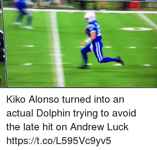 kiko: Kiko Alonso turned into an actual Dolphin trying to avoid the late hit on Andrew Luck   https://t.co/L595Vc9yv5
