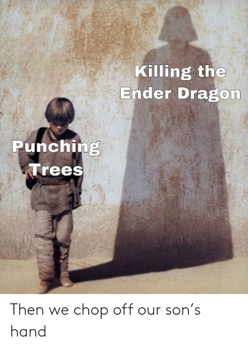 ender: Killing the  Ender Dragon  Punching  Trees Then we chop off our son's hand