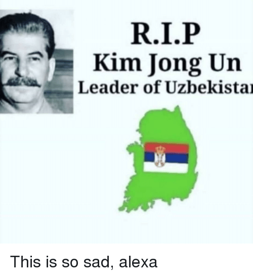Kim Jong-Un, Dank Memes, and Sad: Kim Jong Un  Leader of Uzbekistai