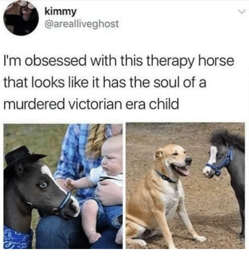 Horse, Dank Memes, and Victorian Era: kimmy  @arealliveghost  I'm obsessed with this therapy horse  that looks like it has the soul of a  murdered victorian era child