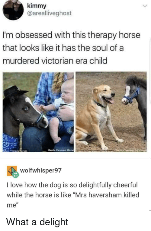 """Love, Horse, and Victorian Era: kimmy  @arealliveghost  I'm obsessed with this therapy horse  that looks like it has the soul of a  murdered victorian era child  Gente Carousel MiniaEANO  wolfwhisper97  I love how the dog is so delightfully cheerful  while the horse is like """"Mrs haversham killed  me"""" What a delight"""