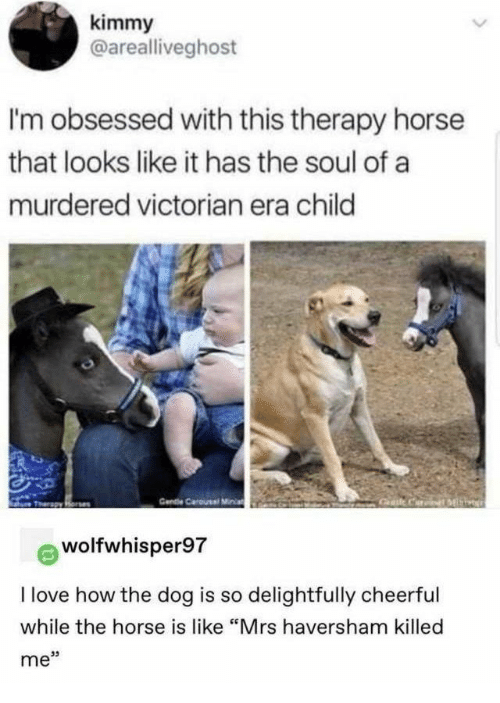 "Victorian: kimmy  @arealliveghost  I'm obsessed with this therapy horse  that looks like it has the soul of a  murdered victorian era child  Cendie Carousel Miia  Gat CariML  Tharapy Rone  wolfwhisper97  I love how the dog is so delightfully cheerful  while the horse is like ""Mrs haversham killed  me"""