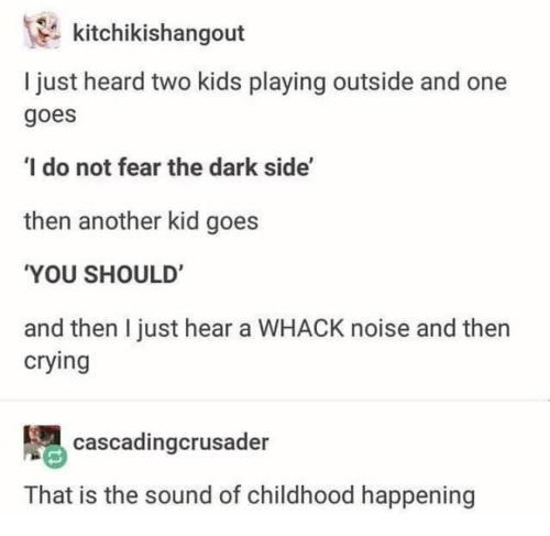 Crying, Kids, and Fear: kitchikishangout  I just heard two kids playing outside and one  goes  I do not fear the dark side'  then another kid goes  YOU SHOULD'  and then I just hear a WHACK noise and then  crying  cascadingcrusader  That is the sound of childhood happening