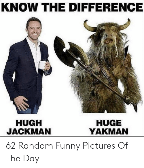 Hugh Jackman: KNOW THE DIFFERENCE  HUGH  JACKMAN  HUGE  YAKMAN 62 Random Funny Pictures Of The Day