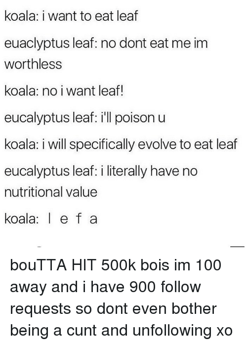 Anaconda, Memes, and Cunt: koala: i want to eat leaf  euaclyptus leaf: no dont eat me im  worthless  koala: no i want leaf!  eucalyptus leaf: ill poison u  koala: i will specifically evolve to eat leaf  eucalyptus leaf: i literally have no  nutritional value  koala e f a bouTTA HIT 500k bois im 100 away and i have 900 follow requests so dont even bother being a cunt and unfollowing xo