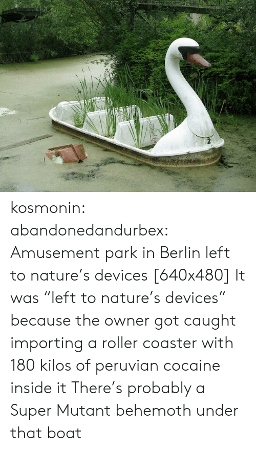 "Tumblr, Blog, and Cocaine: kosmonin: abandonedandurbex:  Amusement park in Berlin left to nature's devices [640x480]  It was ""left to nature's devices"" because the owner got caught importing a roller coaster with 180 kilos of peruvian cocaine inside it   There's probably a Super Mutant behemoth under that boat"