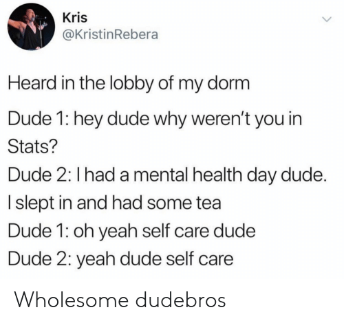 Dude, Yeah, and Wholesome: Kris  @KristinRebera  Heard in the lobby of my dorm  Dude 1: hey dude why weren't you in  Stats?  Dude 2: I had a mental health day dude.  I slept in and had some tea  Dude 1: oh yeah self care dude  Dude 2: yeah dude self care Wholesome dudebros