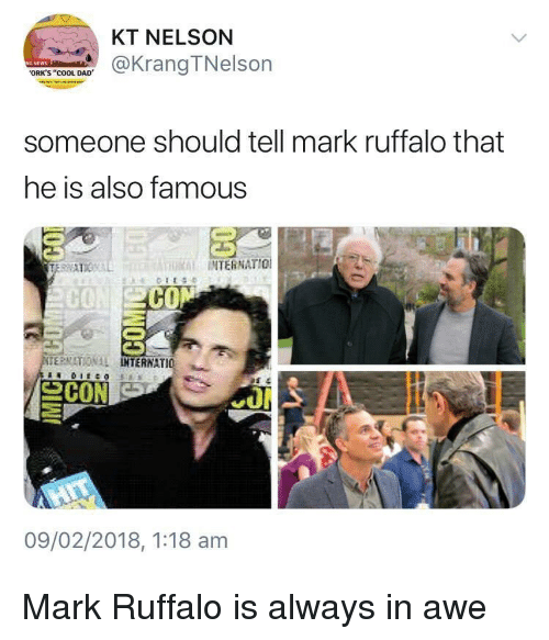 """Mark Ruffalo: KT NELSON  @KrangTNelson  ORK'S """"COOL DAD  someone should tell mark ruffalo that  he is also famous  THRİİ INTERNATIO!  CO  ERMATIONAL  TERNATIO 뇨  09/02/2018, 1:18 am Mark Ruffalo is always in awe"""