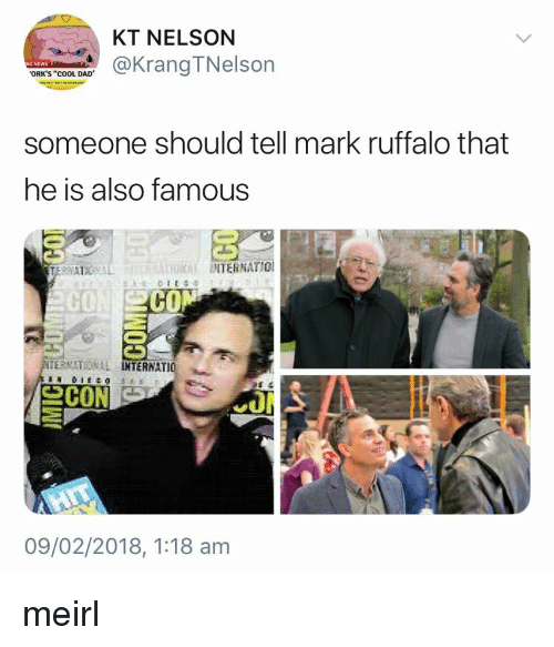 "Cool Dad: KT NELSON  @KrangTNelson  ORK'S ""cOOL DAD  someone should tell mark ruffalo that  he is also famous  INTERNATIO  CO  CO  ERNATIONAL  TERNATIO  09/02/2018, 1:18 am meirl"