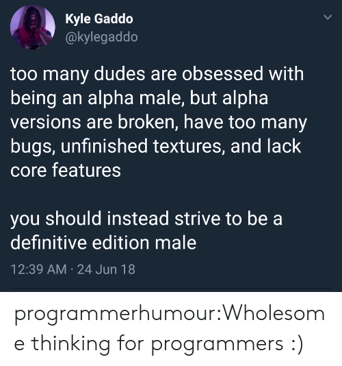 Tumblr, Blog, and Wholesome: Kyle Gaddo  @kylegaddo  too many dudes are obsessed with  being an alpha male, but alpha  versions are broken, have too many  bugs, unfinished textures, and lack  core features  you should instead strive to be a  definitive edition male  12:39 AM 24 Jun 18  > programmerhumour:Wholesome thinking for programmers :)