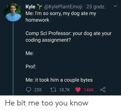 Sorry, Homework, and Dog: Kyle @KylePlantEmoji 23 godz.  Me: I'm so sorry, my dog ate my  homework  Comp Sci Professor: your dog ate your  coding assignment?  Me:  Prof:  Me: it took him a couple bytes  255 t0 18,7K 146K He bit me too you know