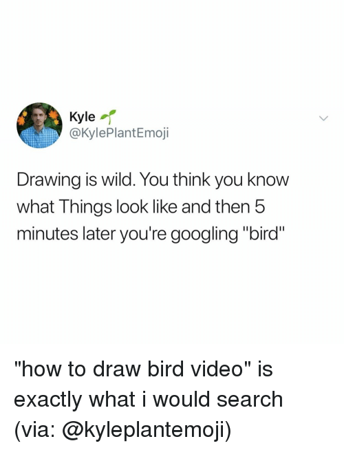 """How To, Search, and Video: Kyle  @KylePlantEmoji  Drawing is wild. You think you know  what Things look like and then 5  minutes later you're googling """"bird"""" """"how to draw bird video"""" is exactly what i would search (via: @kyleplantemoji)"""