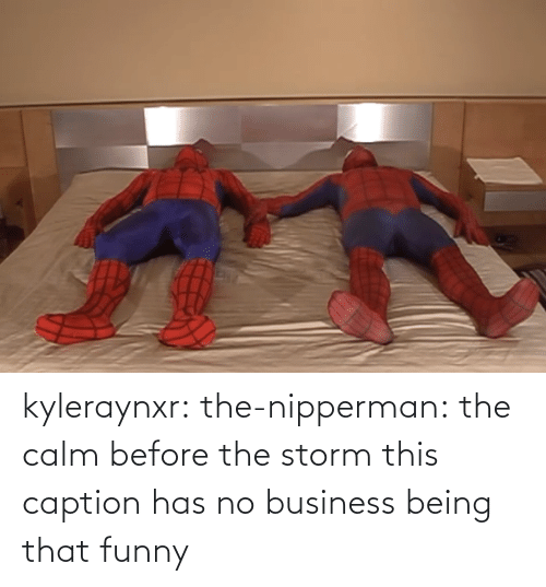 Business: kyleraynxr: the-nipperman: the calm before the storm this caption has no business being that funny