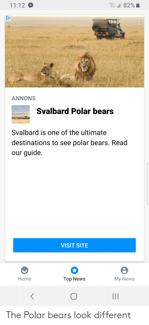 svalbard: l 82%  11:12  ANNONS  Svalbard Polar bears  Svalbard is one of the ultimate  destinations to see polar bears. Read  our guide.  VISIT SITE  Мy News  Home  Top News  A The Polar bears look different