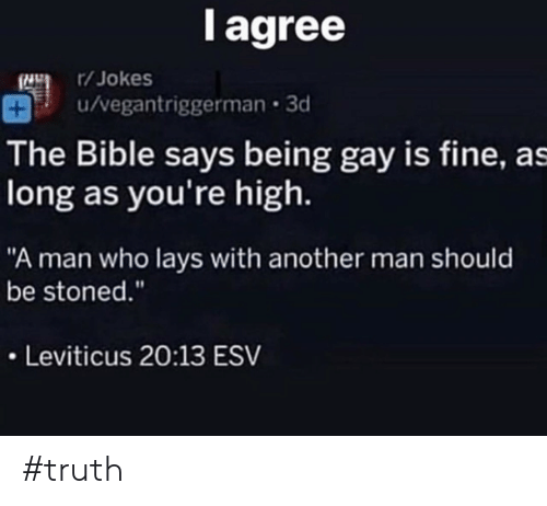 "Lay's, Bible, and Jokes: l agree  /Jokes  u/vegantriggerman 3d  The Bible says being gay is fine, as  long as you're high.  ""A man who lays with another man should  be stoned.""  Leviticus 20:13 ESV #truth"