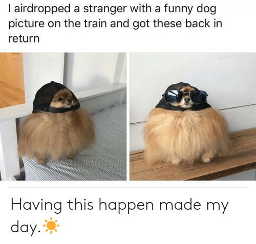 Funny, Train, and Back: l airdropped a stranger with a funny dog  picture on the train and got these back in  return Having this happen made my day.☀️