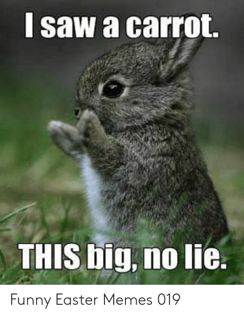 carrot: l saw a carrot.  THIS big, no lie. Funny Easter Memes 019