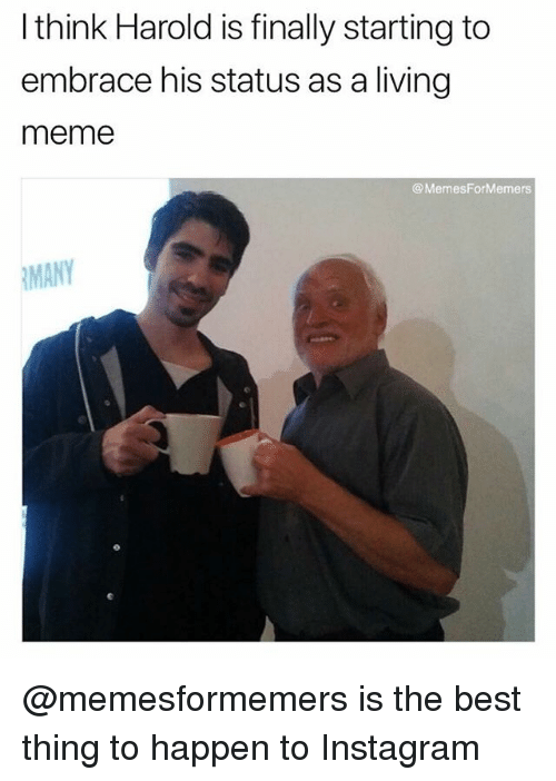 Living the Meme: What happened to the