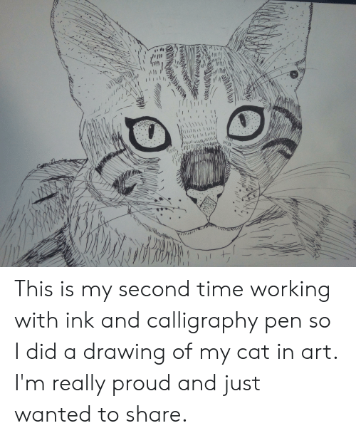 Time, Proud, and Art: La  \l1li  '(Il10111111| This is my second time working with ink and calligraphy pen so I did a drawing of my cat in art. I'm really proud and just wanted to share.