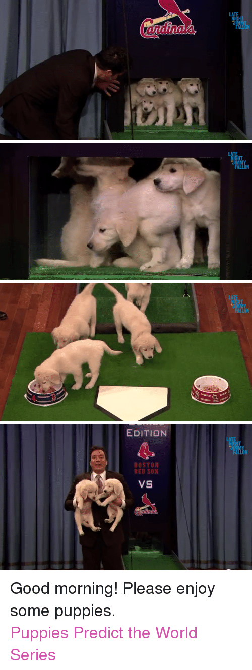 "Puppies, Target, and youtube.com: LA   LA   LATE  NIGHT  FALLON   EDITION  HT  BOSTON  RED SOX  VS <p>Good morning! Please enjoy some puppies. </p> <p><a href=""http://www.youtube.com/watch?v=Wq1X4maWAXA"" target=""_blank"">Puppies Predict the World Series</a></p>"