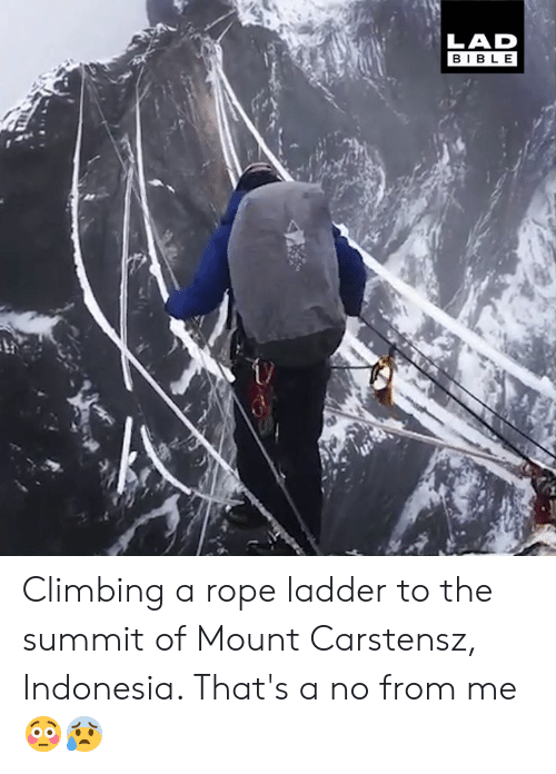 Ladder: LAD  BIBLE Climbing a rope ladder to the summit of Mount Carstensz, Indonesia. That's a no from me 😳😰