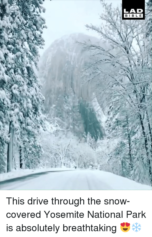 Dank, Bible, and Drive: LAD  BIBLE This drive through the snow-covered Yosemite National Park is absolutely breathtaking 😍❄️