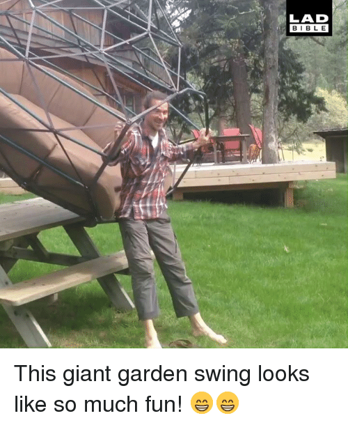 Dank, Bible, and Giant: LAD  BIBLE This giant garden swing looks like so much fun! 😁😁