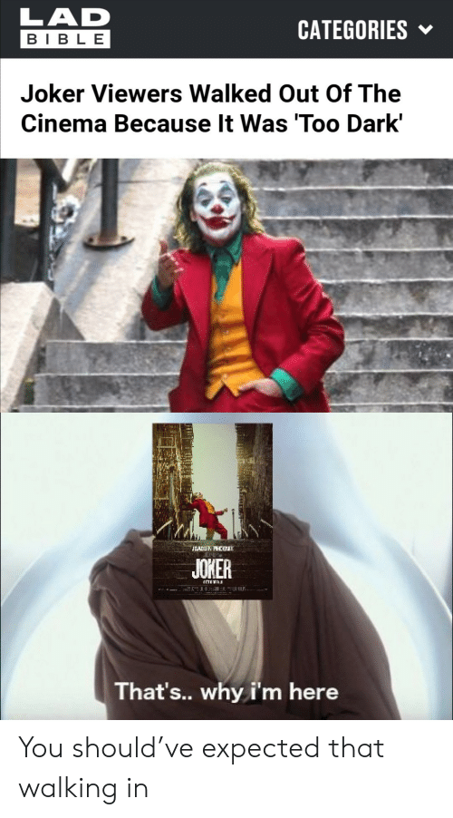 Bible: LAD  CATEGORIES  BIBLE  Joker Viewers Walked Out Of The  Cinema Because It Was 'Too Dark'  JOADUN PHCB  JOKER  That's.. why i'm here You should've expected that walking in