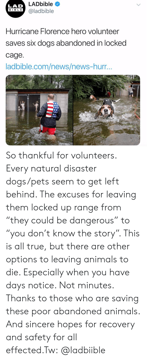 """Animals, Dogs, and Instagram: LADbible  LAD  IBLE @ladbible  Hurricane Florence hero volunteer  saves six dogs abandoned in locked  cage  ladbible.com/news/news-hurr So thankful for volunteers. Every natural disaster dogs/pets seem to get left behind. The excuses for leaving them locked up range from """"they could be dangerous"""" to """"you don't know the story"""". This is all true, but there are other options to leaving animals to die. Especially when you have days notice. Not minutes. Thanks to those who are saving these poor abandoned animals. And sincere hopes for recovery and safety for all effected.Tw:@ladbiible"""