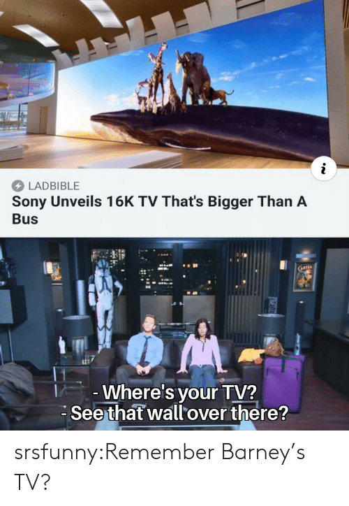 Barney, Sony, and Tumblr: LADBIBLE  Sony Unveils 16K TV That's Bigger Than A  Bus  Where's your TV?  Seethat wallover there? srsfunny:Remember Barney's TV?